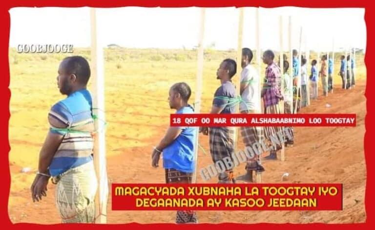 Akhriso: Magacyada 18-kii Qof ee Alshabaabnimada loogu toogtay Puntland & Degaanada ay kasoo jeedaan